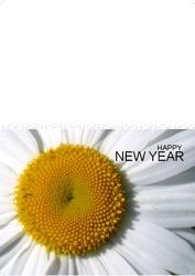 New-Year-02