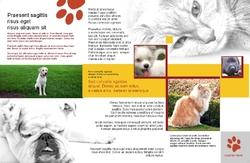 Brochure-22
