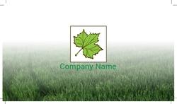 maple-grove