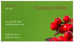 cranberry-bush