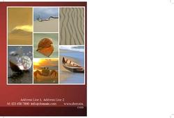 holidays-company-postcard-6