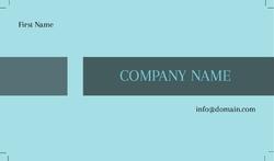 Basic-Business-card-991