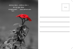 postcard-686