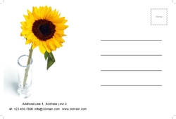 postcard-689