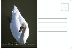 postcard-753