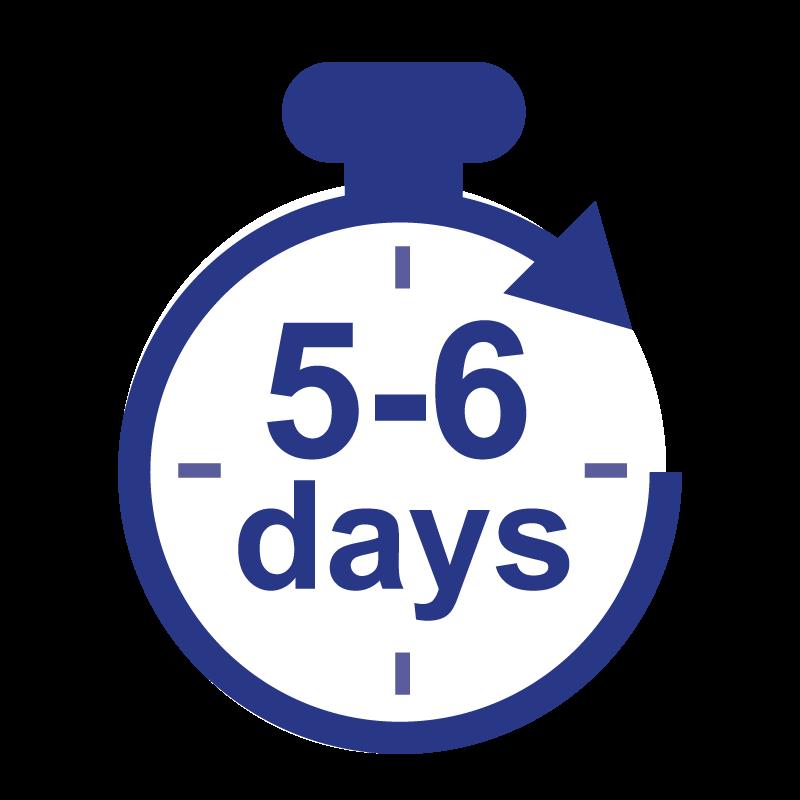 Standard (6 Business days)