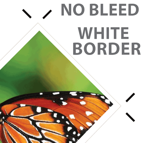 No Bleed: White Border